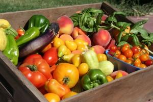 Vegetable basket w fruit-02